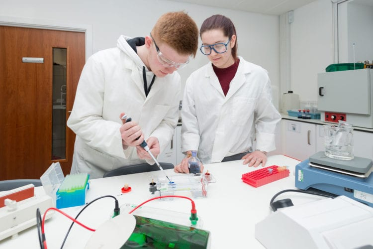 NESCol支持对生命科学和生物技术的区域关注
