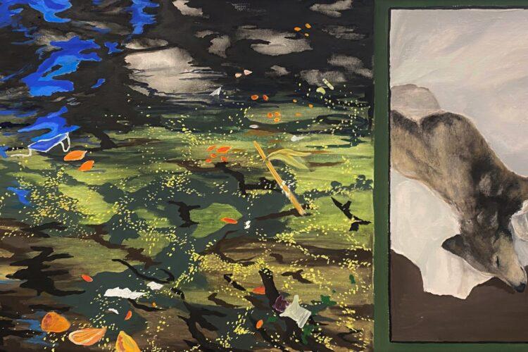 阿伯丁艺术中心的展览为NESCol的艺术家提供了一个大放异彩的机会