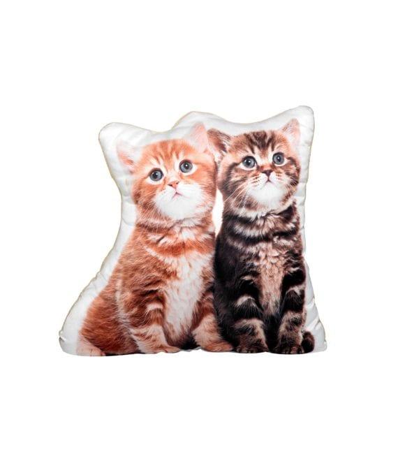 Adorable Pet Cushion – Kittens