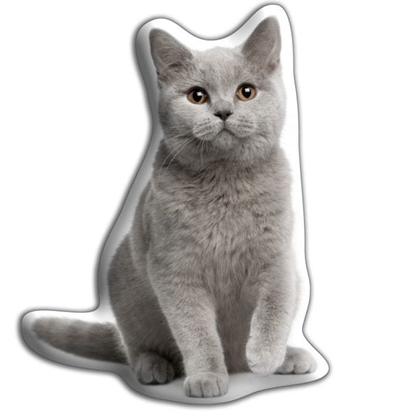 Adorable Pet Cushion – British Blue Cat