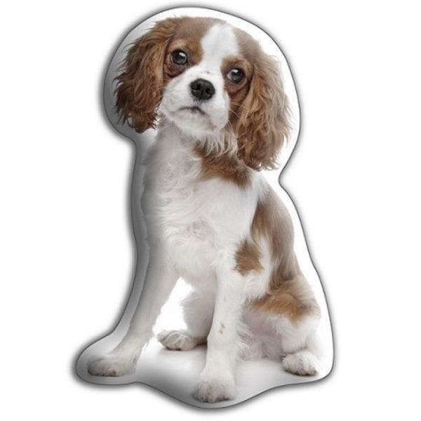 Adorable Pet Cushion – Cavalier King Charles Spaniel