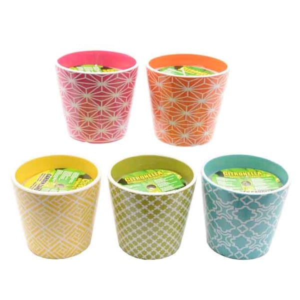 Citronella Wax Candles in Coloured Ceramic Pot