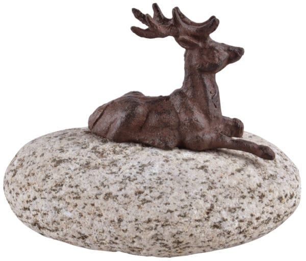 Stag On Stone