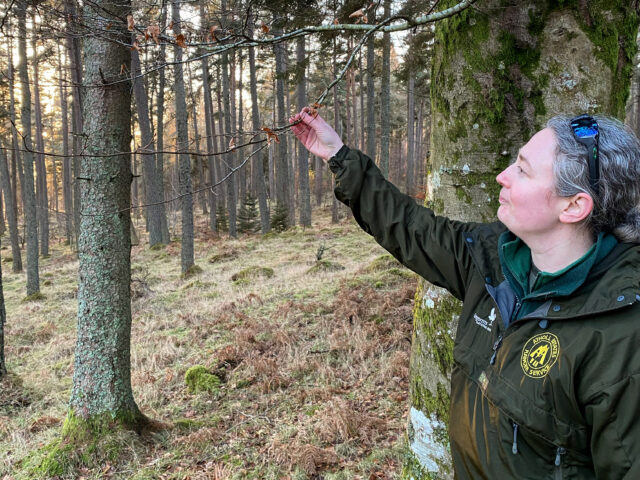 Julia on staying connected with nature