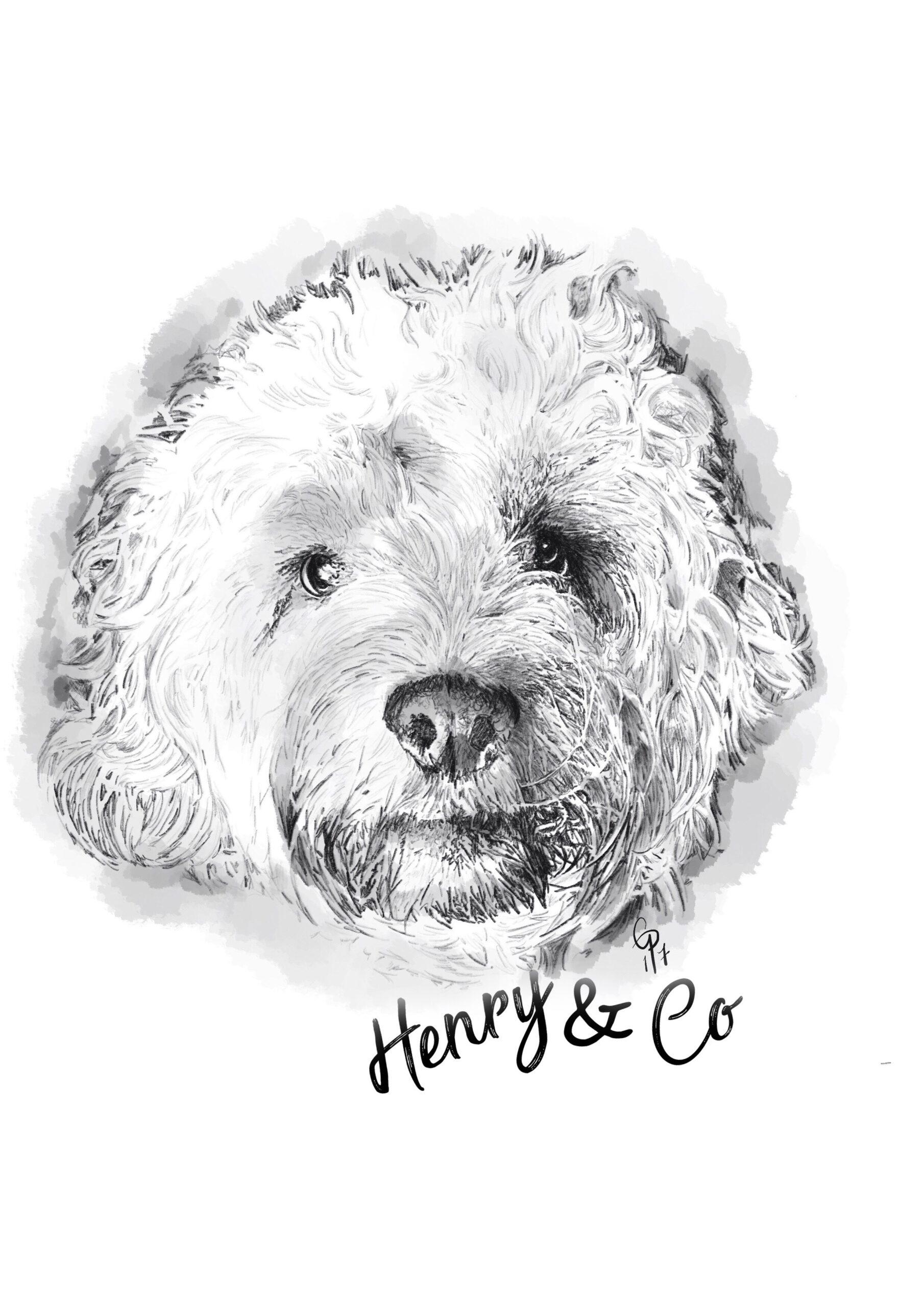 Henry & Co