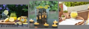 Citronella_Garden_prices banner 2