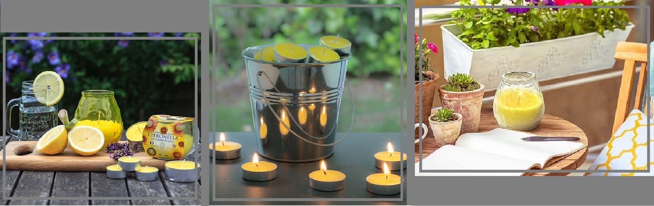 Citronella_Garden_prices bANNER
