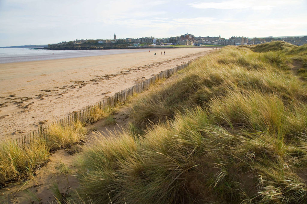 West St Andrews Sands