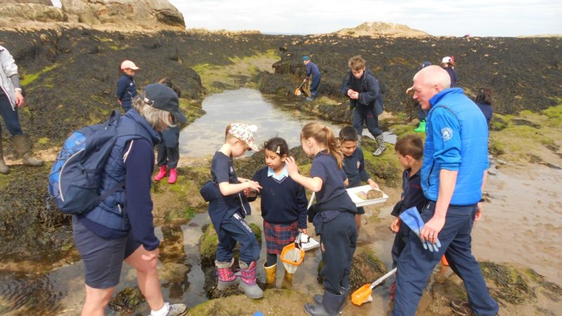 West Sands Ranger educationj visit
