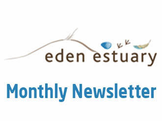 Eden Estuary Newsletter April 2021
