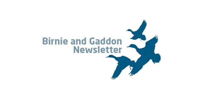 December Birnie & Gaddon Newsletter