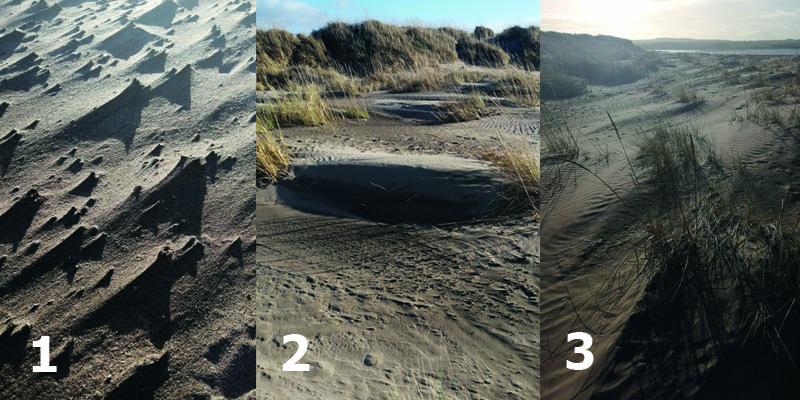 Sand dune graphic