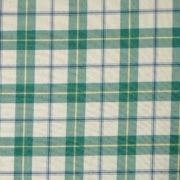 Skye Green BCH056. 2