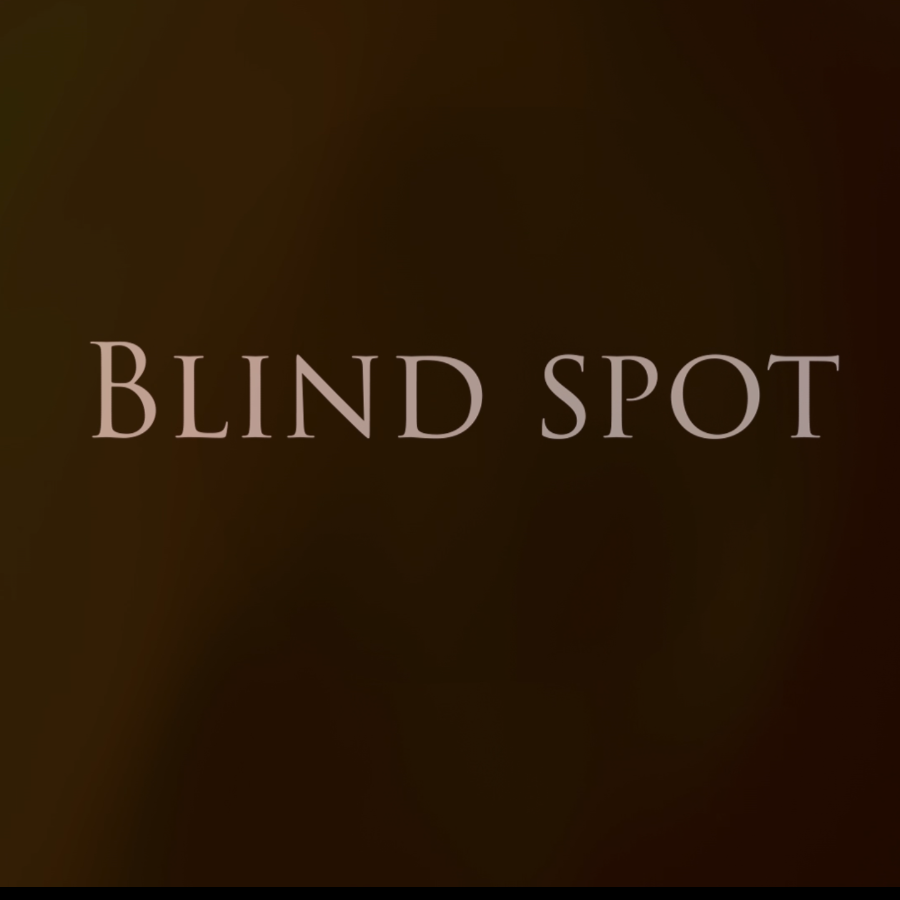 What is it like to be visually impaired?