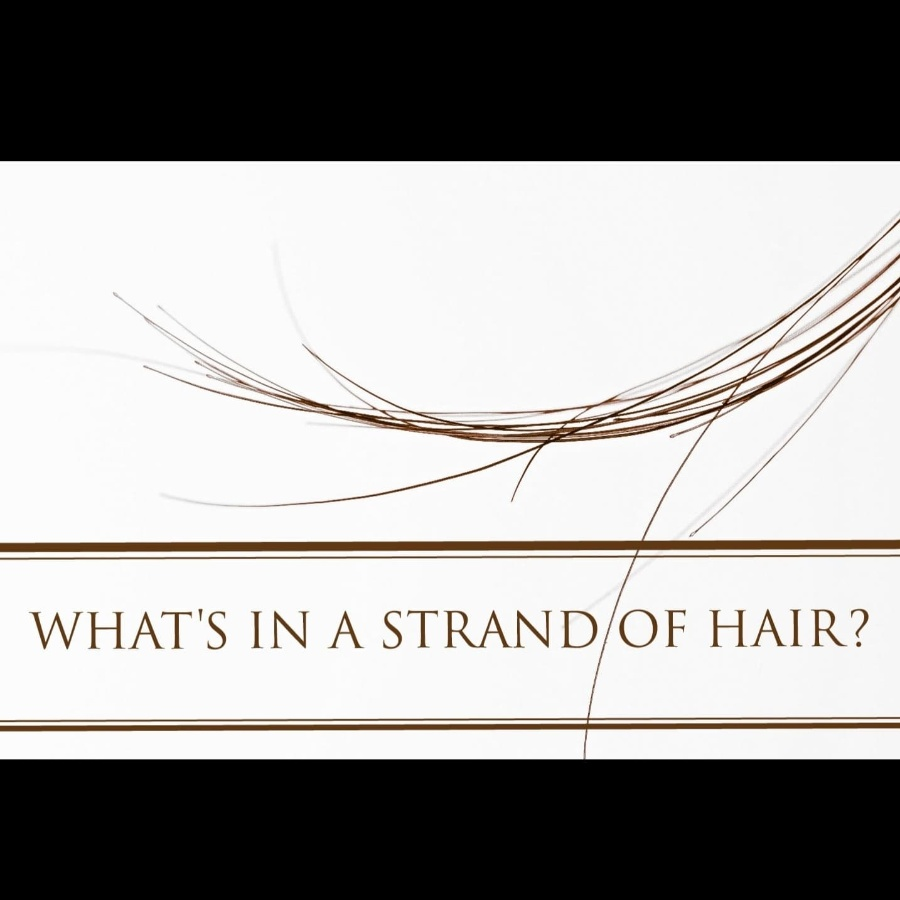 What's in a strand of hair?