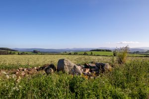 Uninterrupted views across Deeside from Pitcullen for sale on Leys Estate