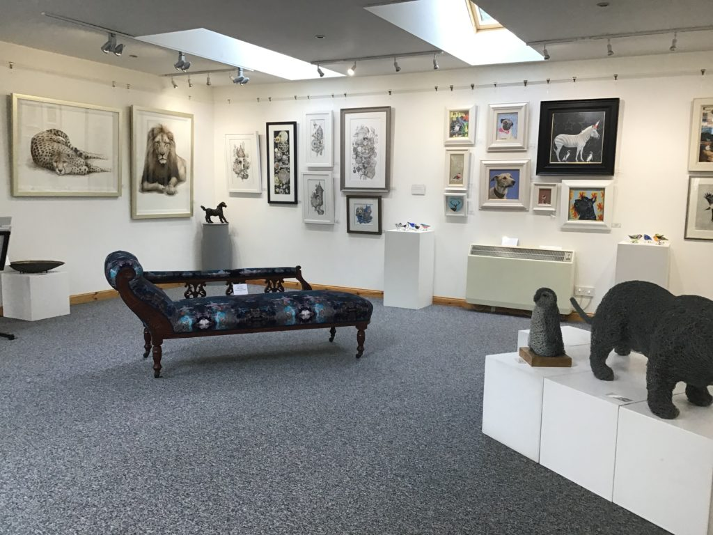 Feathers and Fur exhibition at Milton Art Gallery