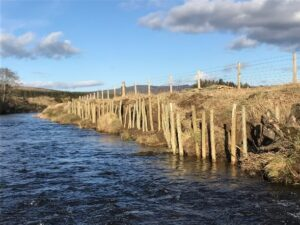 River Don Willow Bank Repair Project