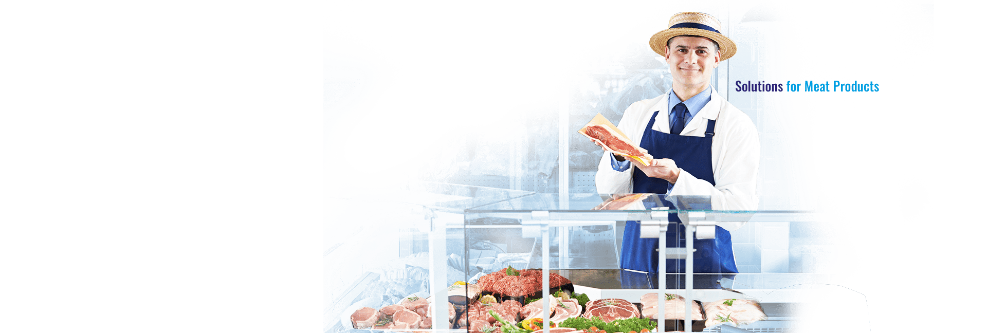 Solutions for Meat Products
