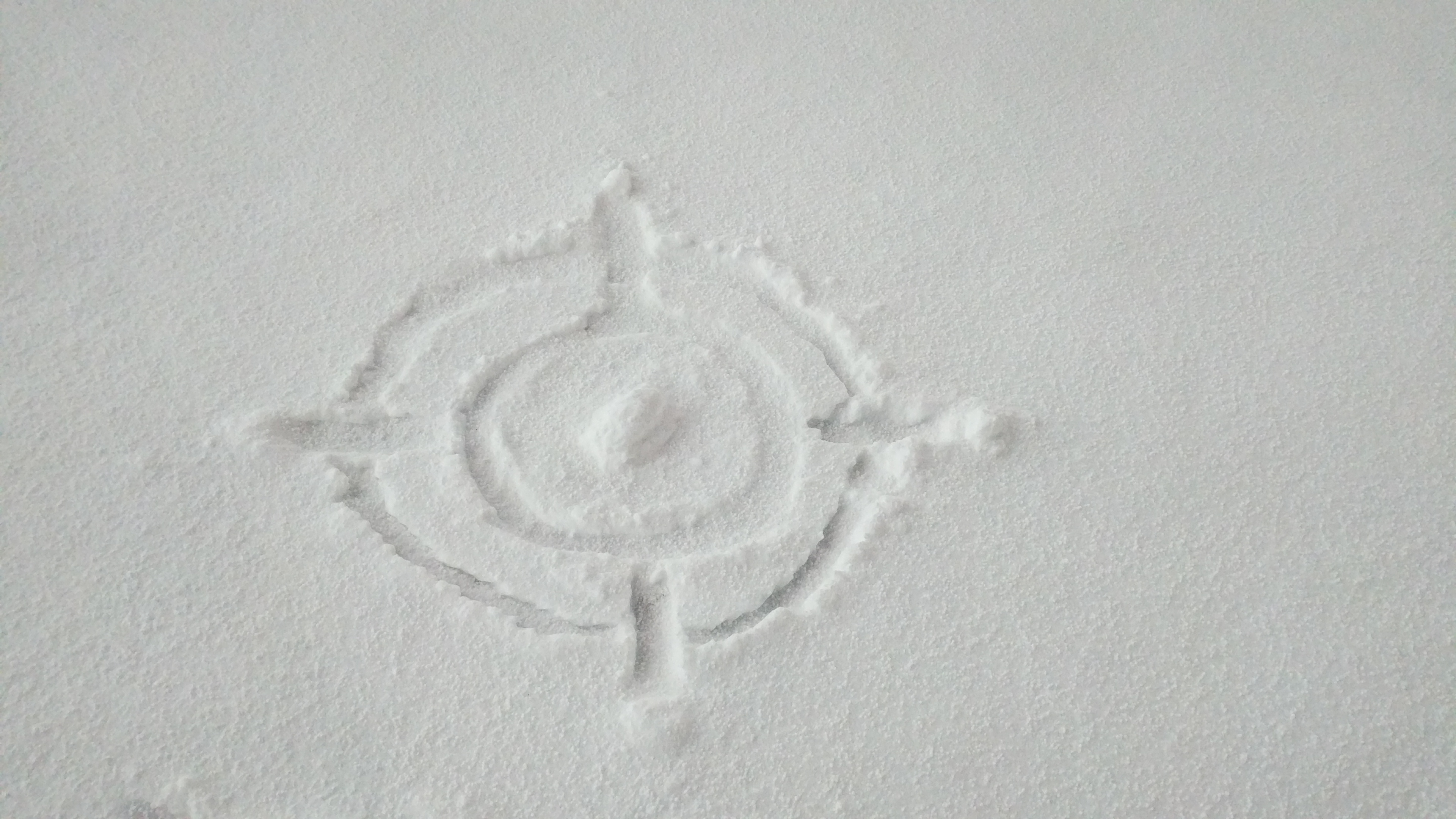 public engagement WCAIR logo in snow