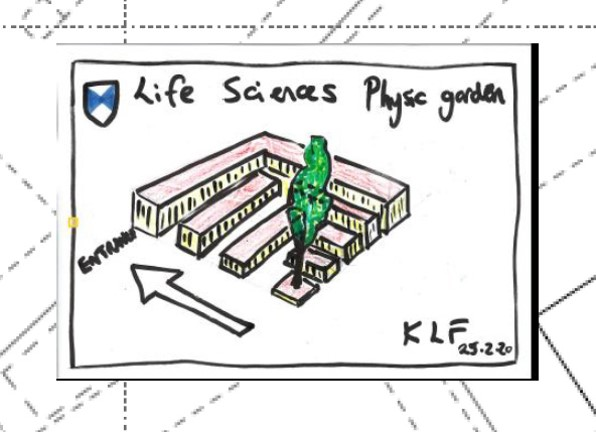 Sketch Illustration Mock up of the Physic Garden