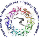 Mode of Action group logo. it reads 'Novel biology to novel medicines. Fighting Neglected Diseases'
