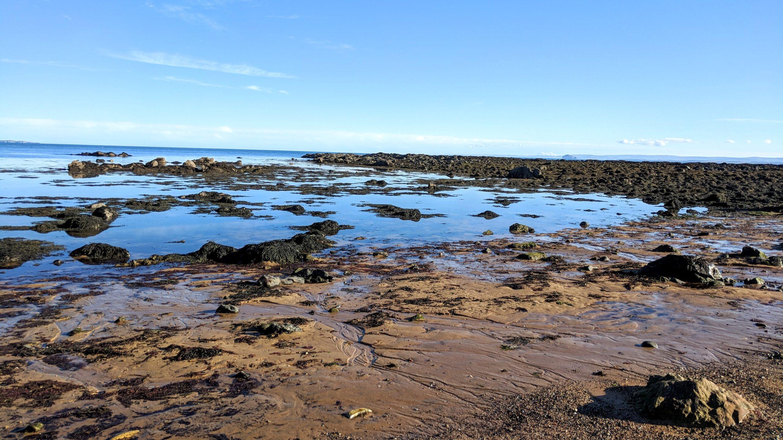 Ellie beach on the south Fife coast